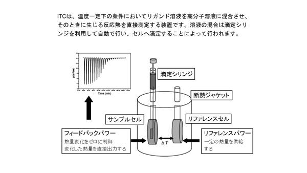 超高感度等温滴定型熱量計 略図